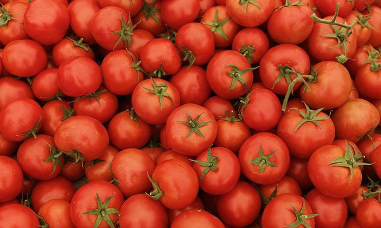 помидоры спелые