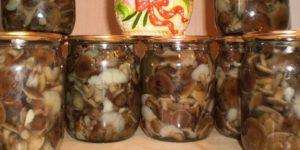 Как в домашних условиях мариновать грибы коровники на зиму, рецепты приготовления из свинушек
