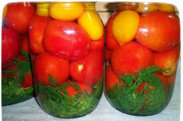 мидоры разного цвета с морковной ботвой