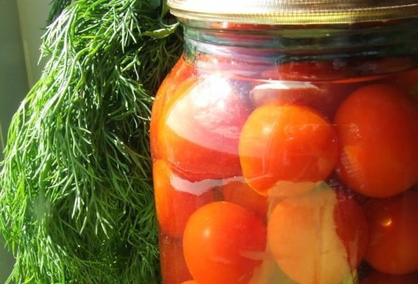 помидоры с морковной ботвой и зеленью