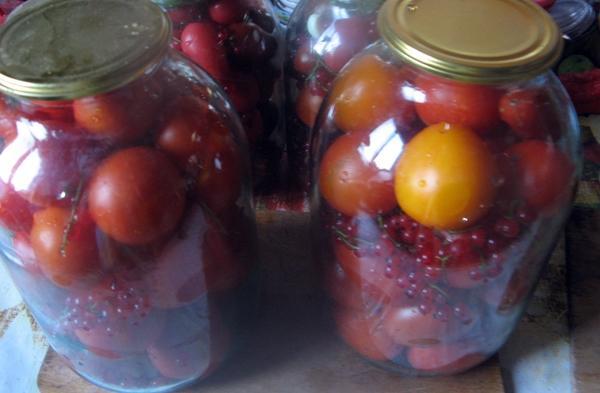 помидоры с красной смородиной в банках