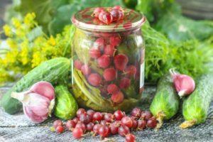 Рецепты хрустящих консервированных огурцов с крыжовником на зиму без уксуса