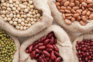 Что такое фасоль — овощ или нет, как выглядит растение, описание и семейство