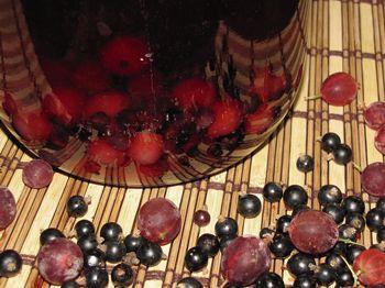 компот из фруктов