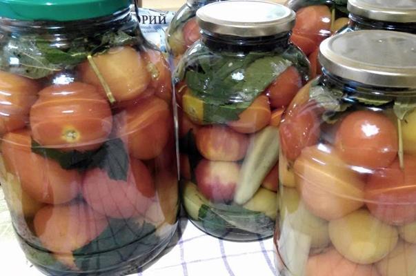 помидоры с малиновыми листьями в 3 литровых банках