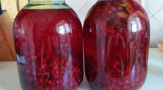 компот из красной черемухи