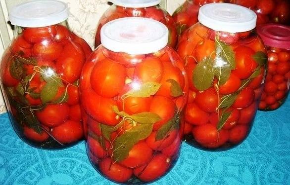 помидоры с вишневыми веточками