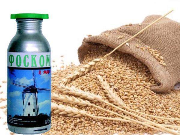 удобрение для пшеницы