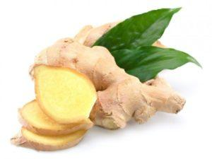 Полезные свойства и вред имбиря для здоровья человека, лечебное применение корня