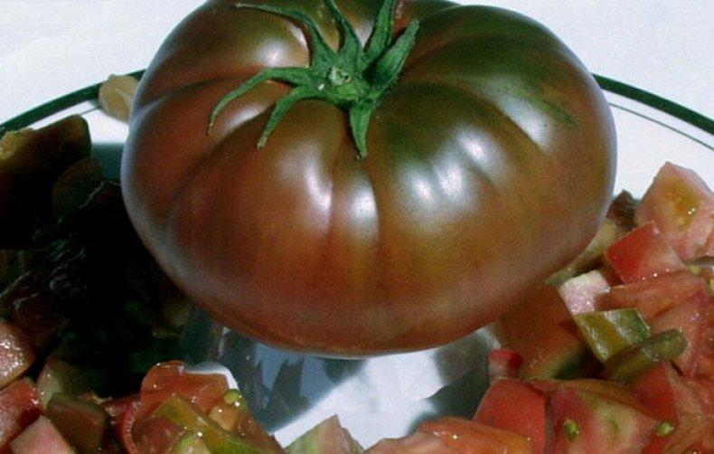 томаты Черномор
