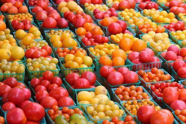 томаты для питера
