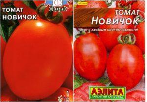 Характеристика и описание томата сорта Новичок, урожайность и выращивание