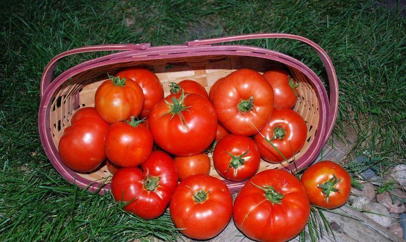 биф томат