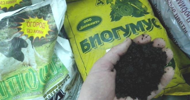 Биогумусом для рассады