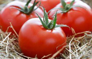 Описание и характеристики томатов Анюта, урожайность и выращивание