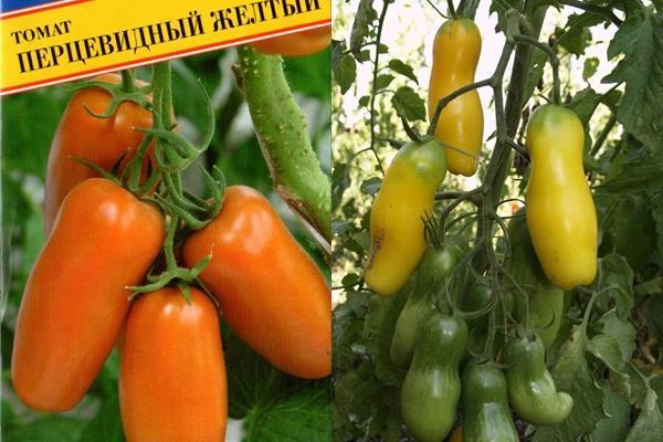 томат перцевидный желтый