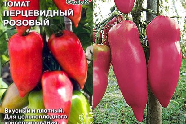 томат перцевидный розовый