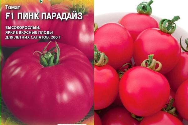 томат пинк парадайз f1
