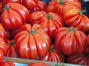 Описание и характеристики самых сладких сортов томатов для теплиц и открытого грунта