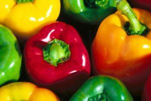 Описание лучших сортов перца 2021 года для теплиц и открытого грунта