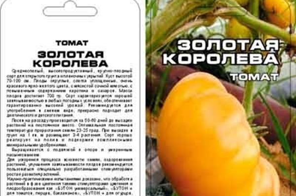 томат Золотая Королева