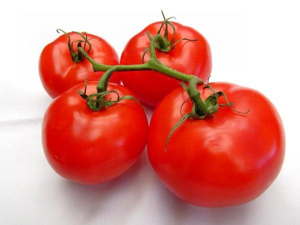 томат альфа