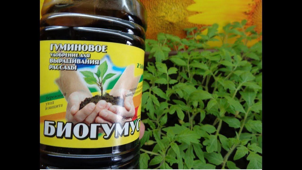 биогумус для томатов