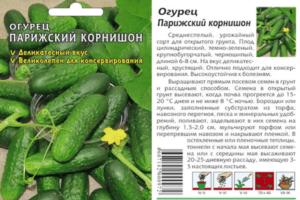 Характеристики и описание сорта огурцов Парижский корнишон, выращивание