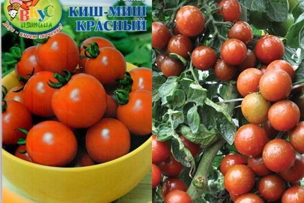 Кишмиш красный томат