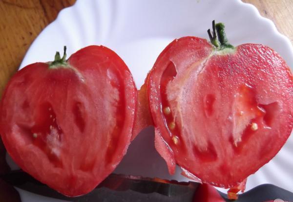 бычье сердце томат