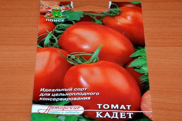 семена томата кадет