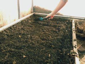 Как подготовить почву для огурцов весной в теплице и какую землю они любят