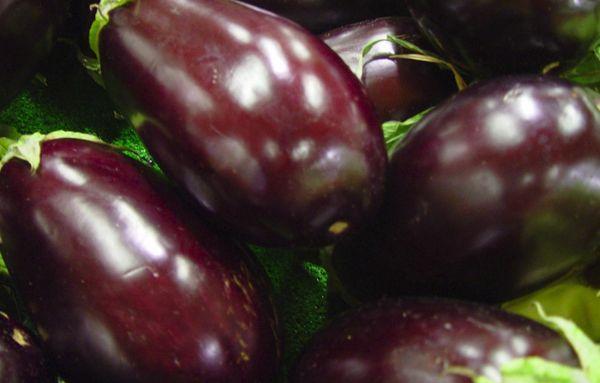 урожайность баклажана