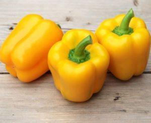 40 лучших сортов желтого перца с характеристиками и описанием