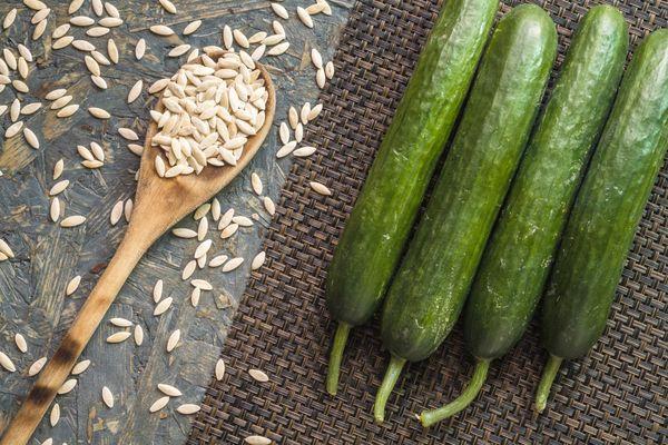 Огурцы и семена