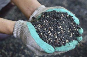 Применение кальциевой селитры для огурцов, как подкормить и можно ли