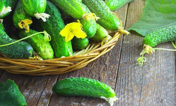 Зеленцы в корзине