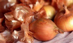Применение луковой шелухи для подкормки огурцов и правила полива