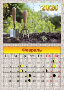 Посадочные дни по лунному календарю садовода в феврале 2020 года