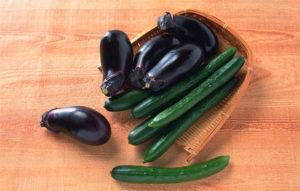 Можно ли сажать баклажаны в одной теплице с огурцами, как выращивать и ухаживать