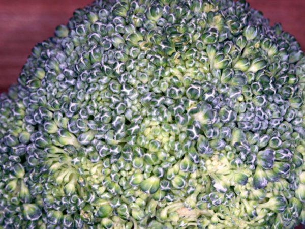 брокколи уходит в цвет