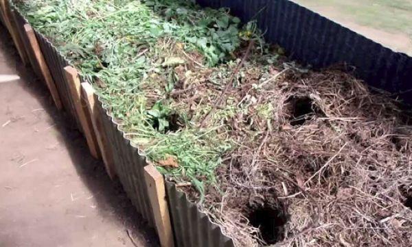 Грядки с травой