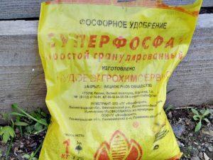 Инструкция по применению удобрения суперфосфат для огурцов