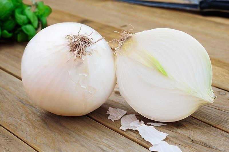 семена белого лука