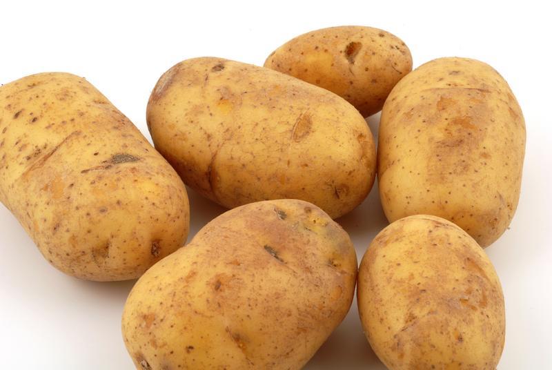 часть египетский картофель фото возникает