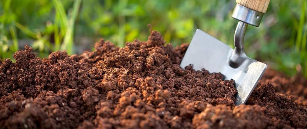 лопата и земля