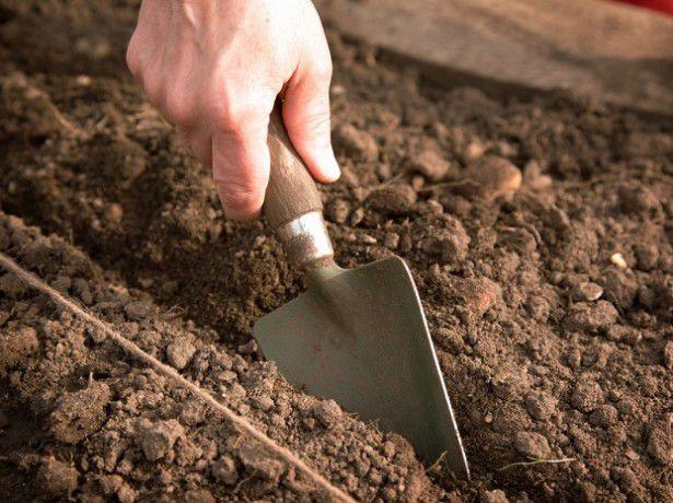 уход за почвой