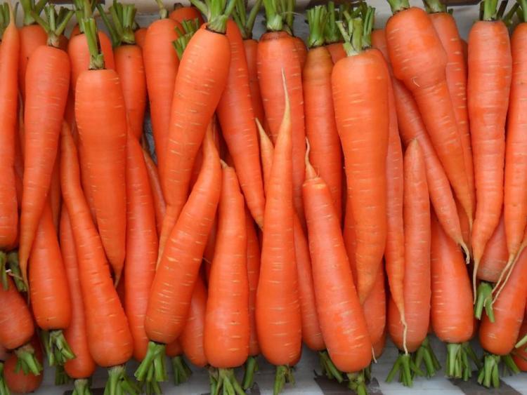 Оранжевый мускат