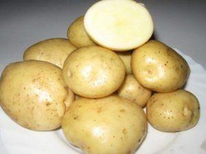 Описание и характеристика сорта картофеля Скарб, правила посадки и ухода