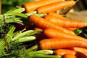 Когда проводить уборку урожая моркови с грядки на хранение, от чего зависит срок